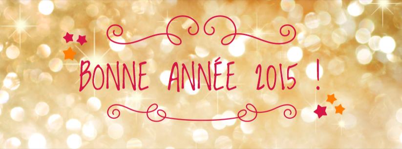 bonne-annee-2015 altitude lotissement terrain abatir seine maritime eure 76 27